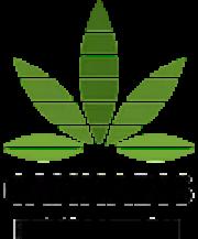 cannabis-revolution